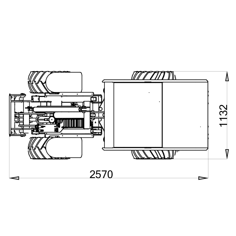 825D-pianta